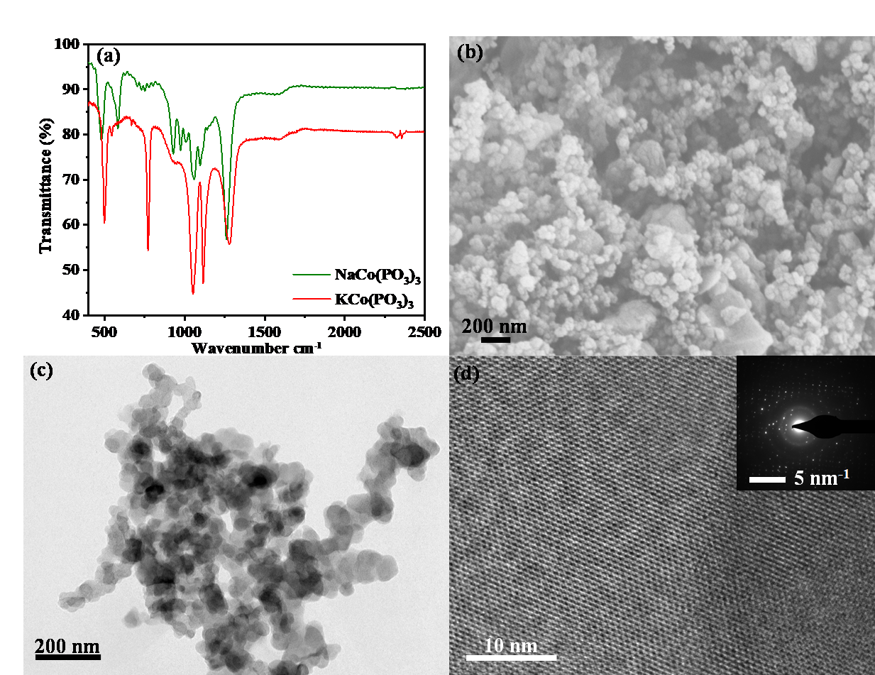Exploration of Phosphate Class of Bi-Functional Electrocatalysts For