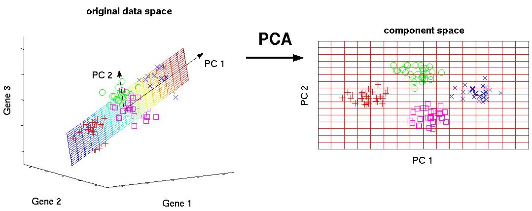 fig_pca_principal_component_analysis.png