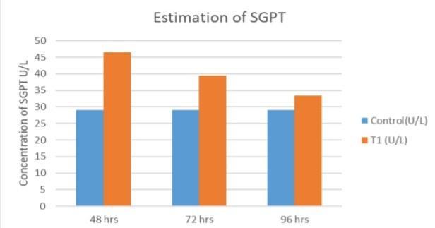 SGPT.jpg