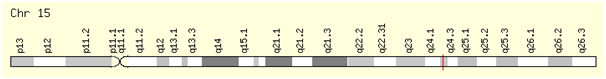 chromosomal location of miR-631.png