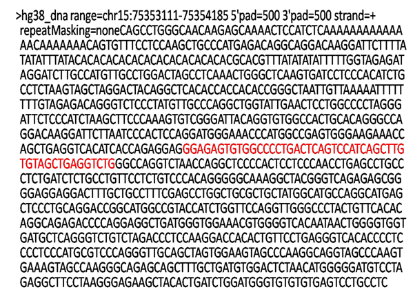 miR-631 DNA sequence.png