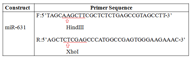 restriction sites on primers.png
