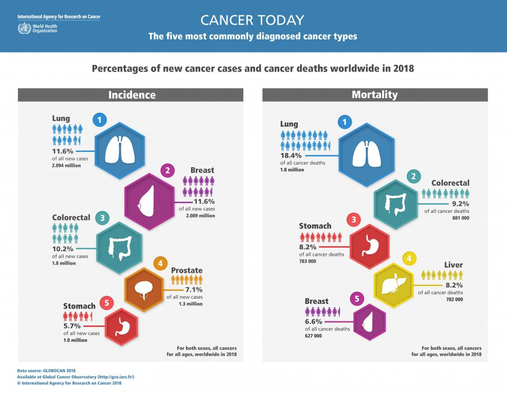 GLOBOCAN 2018 5 most commonly diagnosed cancer types.jpg