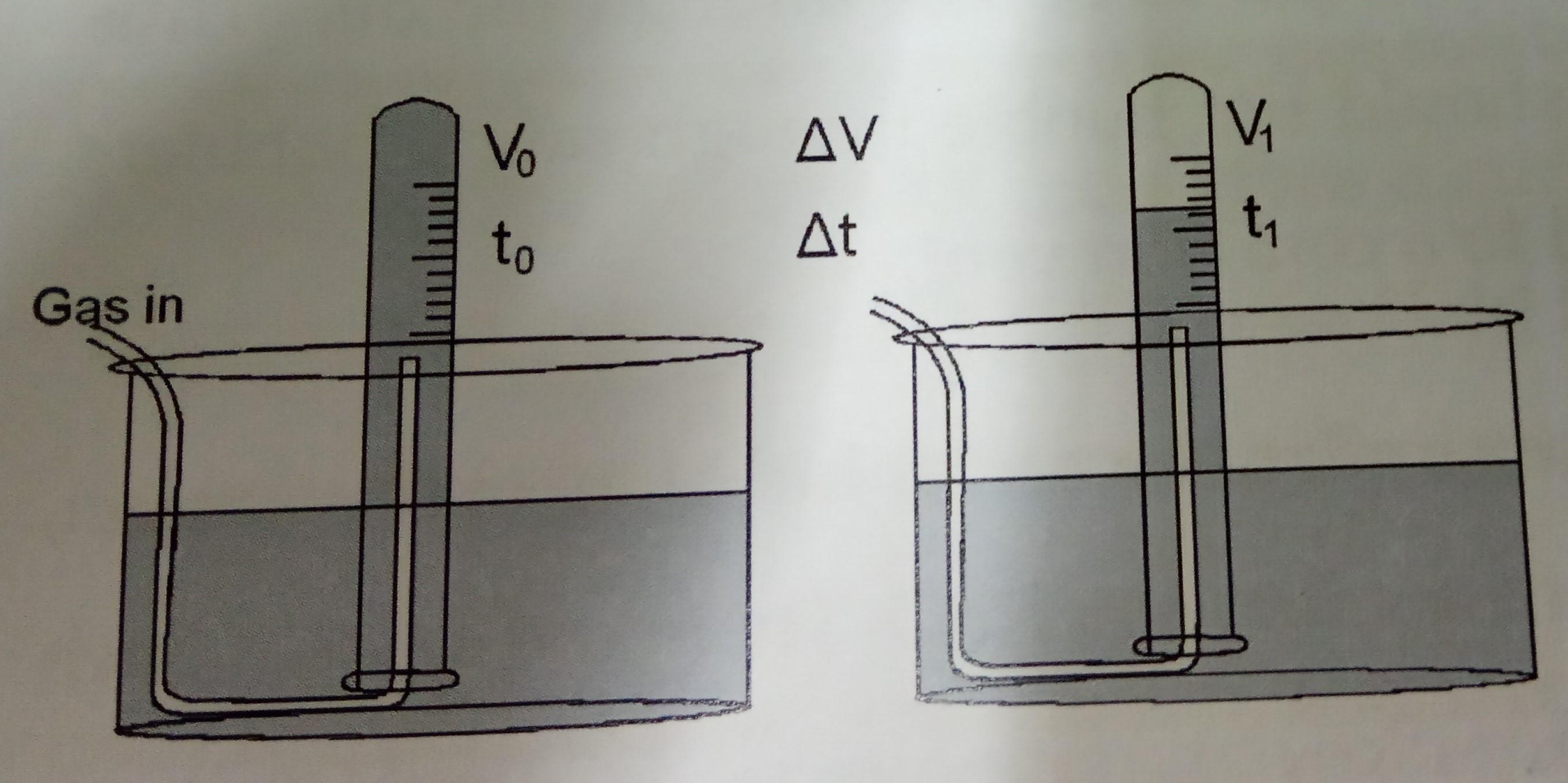 ino5 (2).jpg